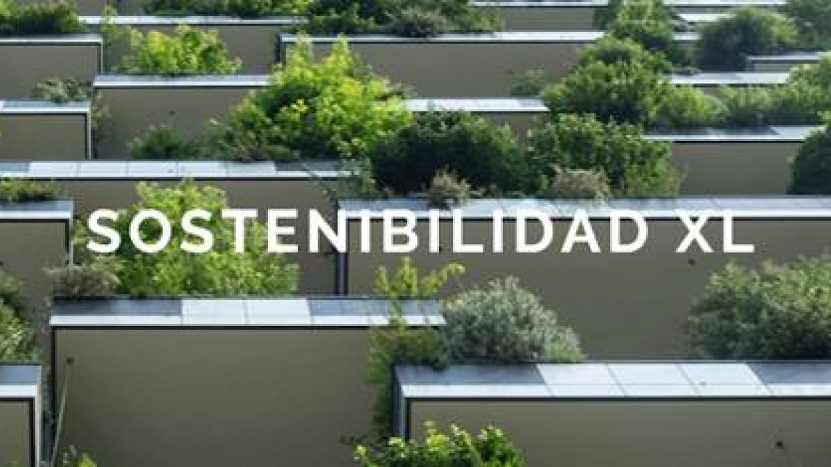 Evento de Sostenibilidad de este año: SOSTENIBILIDAD XL