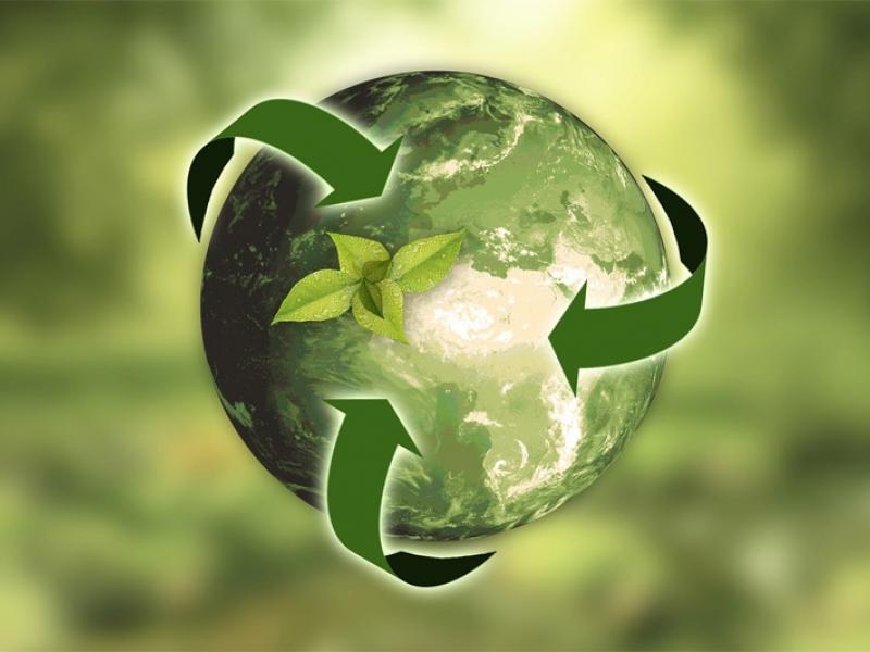 Diseña en Verde (Eco-innovación)