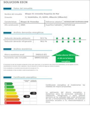 Figura 2. Informe adicional con información complementaria